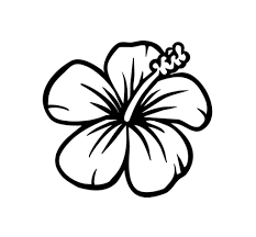 hawaiian flower coloring pages printable eson me
