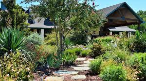 landscaping landscape design and lawn maintenance in rockwall and