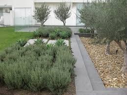 landscape designer landscape design garden designer garden