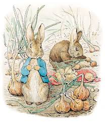 rabbit by beatrix potter beatrix potter names jemima