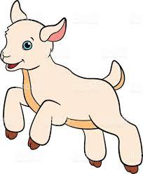 best cartoon farm animals for kids little cute baby goat vector cdr
