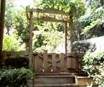 Backyard Arbor How To Build A Backyard Arbor Swing Today U0027s Homeowner