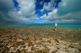 christmas island outfitters fly fishing lodges and trips