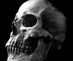 what are skull tattoos and what do they stand for my next art project art pinterest skull reference art faces