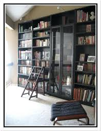Ikea Billy Bookcase With Doors Ikea Bookcase With Glass Doors Bookcase Glass Doors Ikea Billy