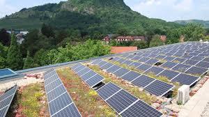 burnley demonstration green roof the infrastructure biodiversity