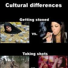 Cultural Memes - cultural differences by shadowgun meme center