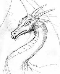 dragons this is a dragon i sketched and havnt had time to color