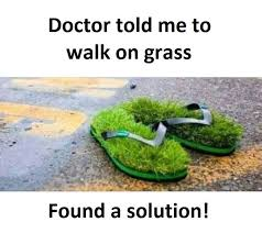Grass Memes - found a solution funny pictures quotes memes funny images