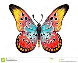 butterfly tattoo stock photos images u0026 pictures 348 images