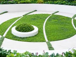 100 clover lawn and landscape which plants to use as lawn