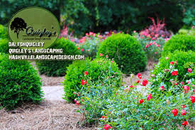 landscape design photos nashville landscape design services for brentwood franklin tn