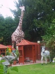 giraffe size 19ft jr 2250 the jolly roger