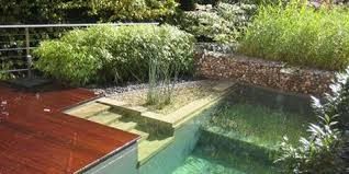 swimming pools natural pools natural swimming pools and ponds