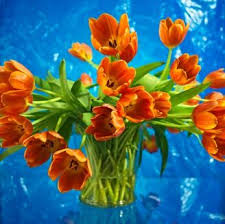 fresh cut flowers preserving fresh cut flowers