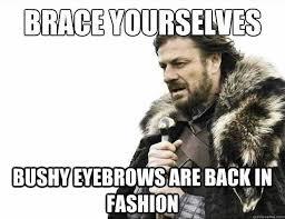 Bushy Eyebrows Meme - bushy eyebrows meme image gallery hcpr on bushy eyebrows meme
