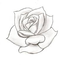 line drawing of a rose free download clip art free clip art