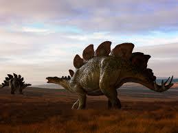 dino don u0027s dinosaur quiz a dinosaurs activity scholastic