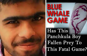 Challenge Victim Tricity Fears To Its Victim To Blue Whale Challenge In