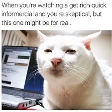 Rich Cat Meme - so skeptical russian memes