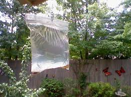 How To Get Rid Of Backyard Flies by Get Rid Of Flies This Summer All Summer Long Useful Tips For Home