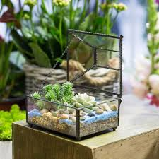pot bonsai design aliexpress com buy tabletop geometric polyhedron glass terrarium