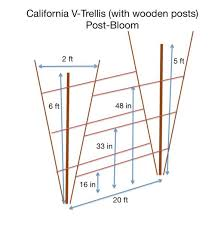 Wooden Trellis Plans Trellis Systems Nc State Extension Publications