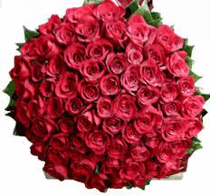 3 dozen roses 5 dozen roses palm roses