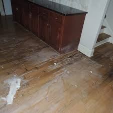 Water Damaged Laminate Flooring Dratech Services Commercial And Residential Mold Removal U0026 Water