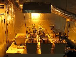 raised bed gardening atlantis hydroponics blog