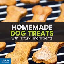 recipe for dog treats dog treats easy recipes your dogs will