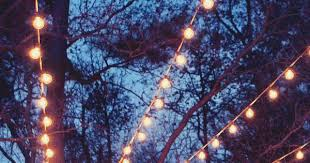 outdoor string lights in trees inrd quanta lighting