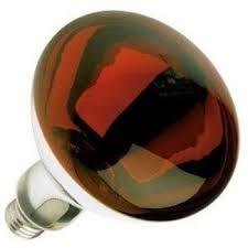 red heat lamp 250 watts br40 5 000 hours long life light bulb