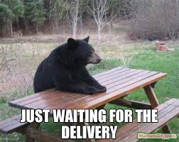 Delivery Meme - just waiting for the delivery meme bad luck bear 53603 memeshappen
