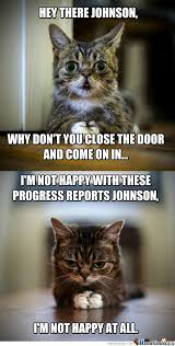 Lil Bub Meme - if your boss asks you to close the door its a trap by