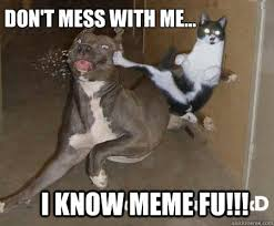 Mess Meme - i know meme fu don t mess with me kung fu cat quickmeme
