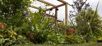 Bbc Home Design Inspiration by Www Gardeners World Design Ideas Classy Simple To Www Gardeners