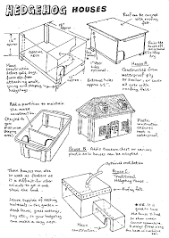 How To Make House Plans Preparing To Make A Hedge Hog House And Taking Care Hedgehog