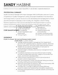 Sample Resume Templates Letter Cv Templates Assurance Reference And Example Cv Quality