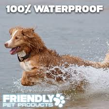 100 how to keep dog in yard without fence how to install a
