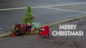 merry from the pothole gardener