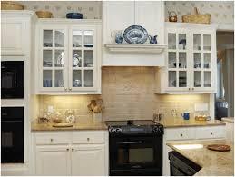 Ikea Kitchen Cabinet Organizers Pantry Organizers Ikea White Wooden Countertop Simple Plain White