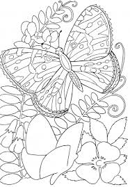 hard butterflies coloring pages for adults to print butterfly