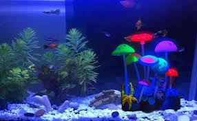Amazon Aquarium Decorations Govine Glowing Effect