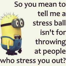 Tuesday Meme - happy tuesday meme to share