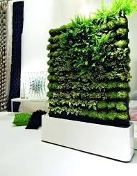 indoor wall garden indoor wall gardens indoor wall garden awesome interior indoor wall