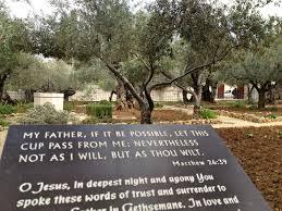 chapter 20 gethsemane u0026 chapter 21 golgotha jesus a pilgrimage