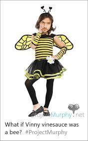 Vinny Meme - what if vinny vinesauce was a bee vinesauce
