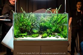 amano aquascape mr takashi amano lecture and workshop in hannover germany aqua