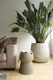 jokjor living room http www jokjor com en huiskamer planten